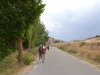 снова Camino Frances