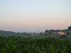 Camino Frances Галисия